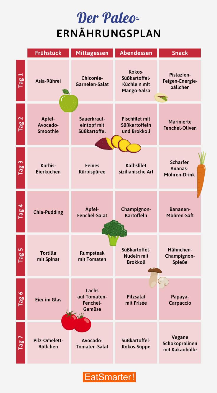 Paleo vegetarische Ernährung pdf